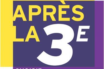 cp-ap-3e.jpg